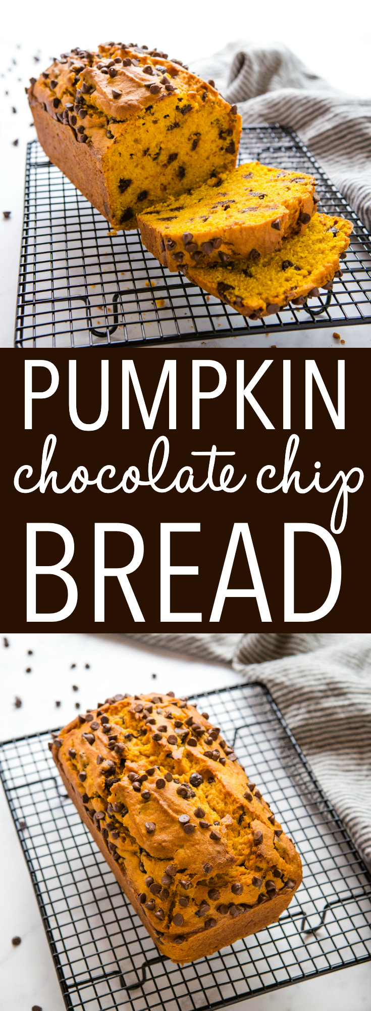 This Best Ever Chocolate Chip Pumpkin Bread is the perfect sweet snack for fall! Light, fluffy and full of real pumpkin and chocolate chips! Make it in one bowl! Recipe from thebusybaker.ca! #pumpkin #chocolatechip #bread #loaf #muffins #baking #sweet #dessert #fall via @busybakerblog