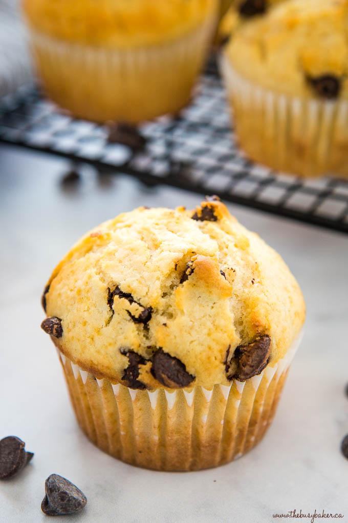 closeup image: chocolate chip muffin