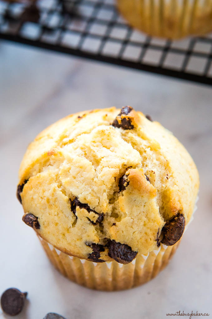 crispy top of chocolate chip muffin