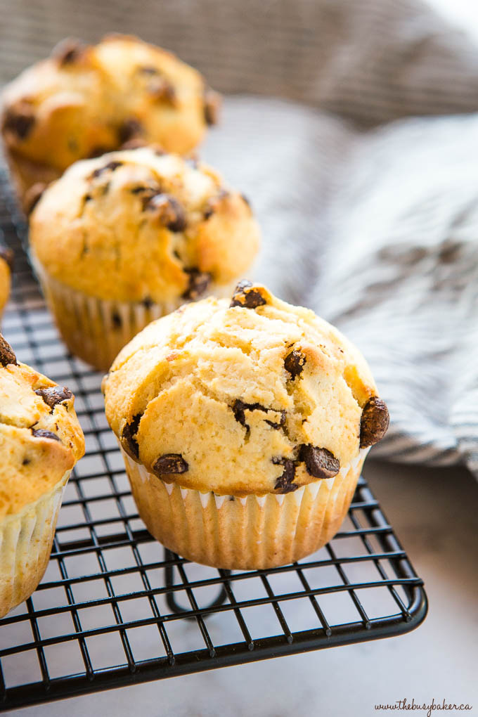 chocolate chip muffins on black wire rack