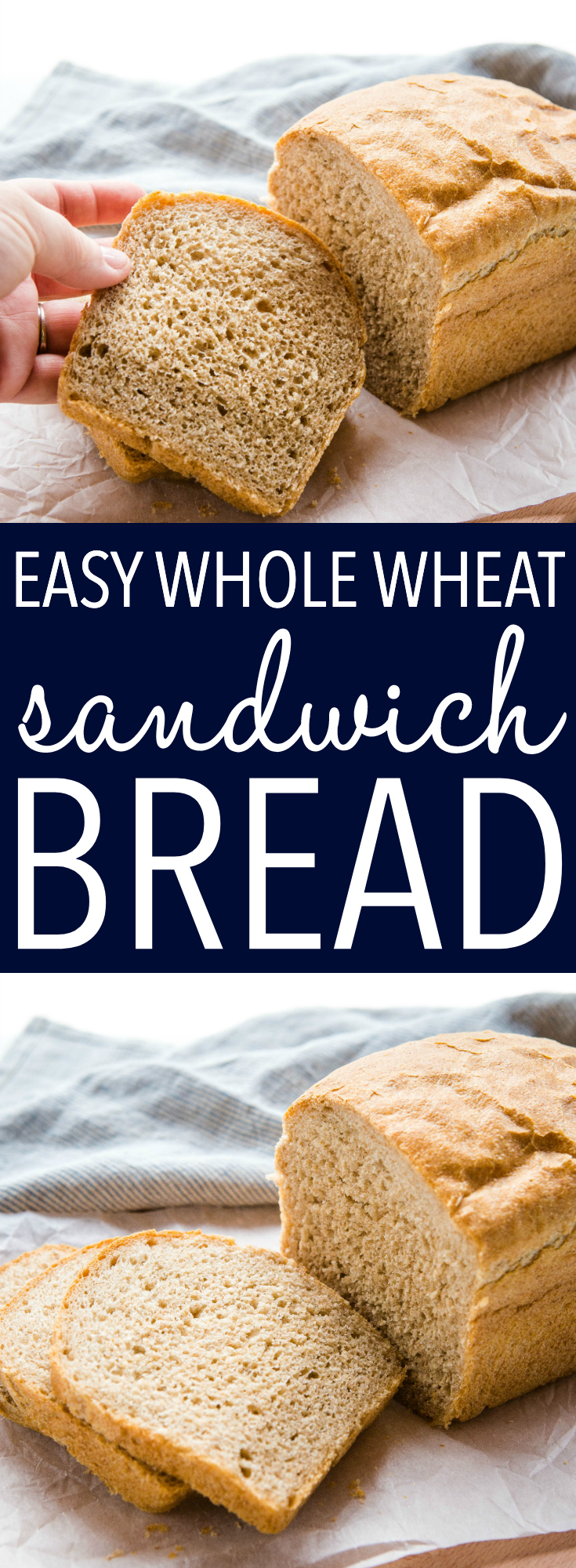This Easy Whole Wheat Sandwich Bread is the perfect simple whole wheat bread that's delicious and hearty, and perfect for school lunches, toast for breakfast, or to serve with your favourite soups or stews! Recipe from thebusybaker.ca! #bread #homemadebread #wholewheatbread #sandwichbread #wholegrain #lunch #schoollunch #healthy #homemade #homesteading via @busybakerblog