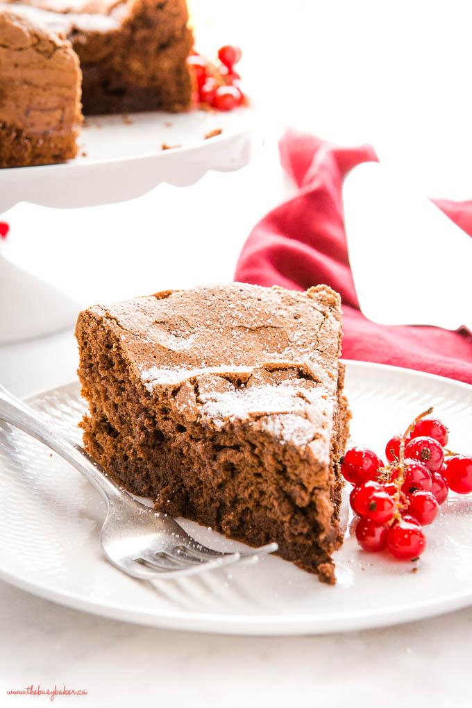 dense, fudgy flourless chocolate cake