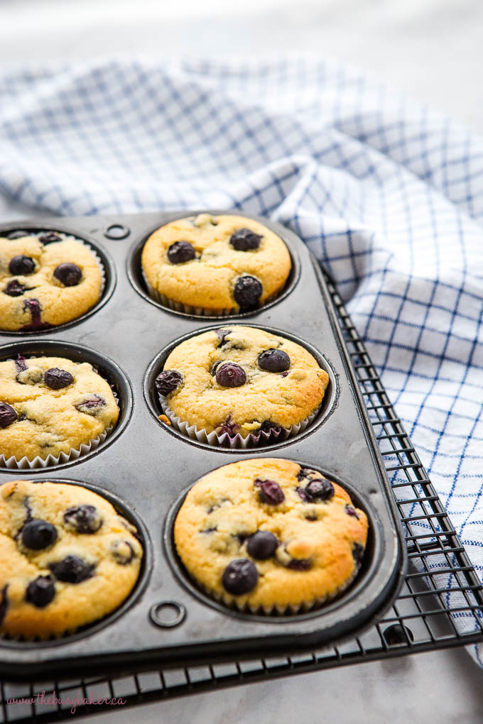 low carb blueberry muffins in muffin tin