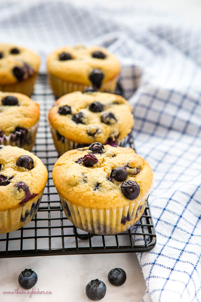 low carb blueberry muffins on wire rack with fresh blueberries