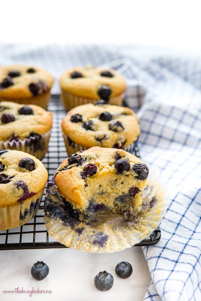 low carb blueberry muffins with fluffy texture