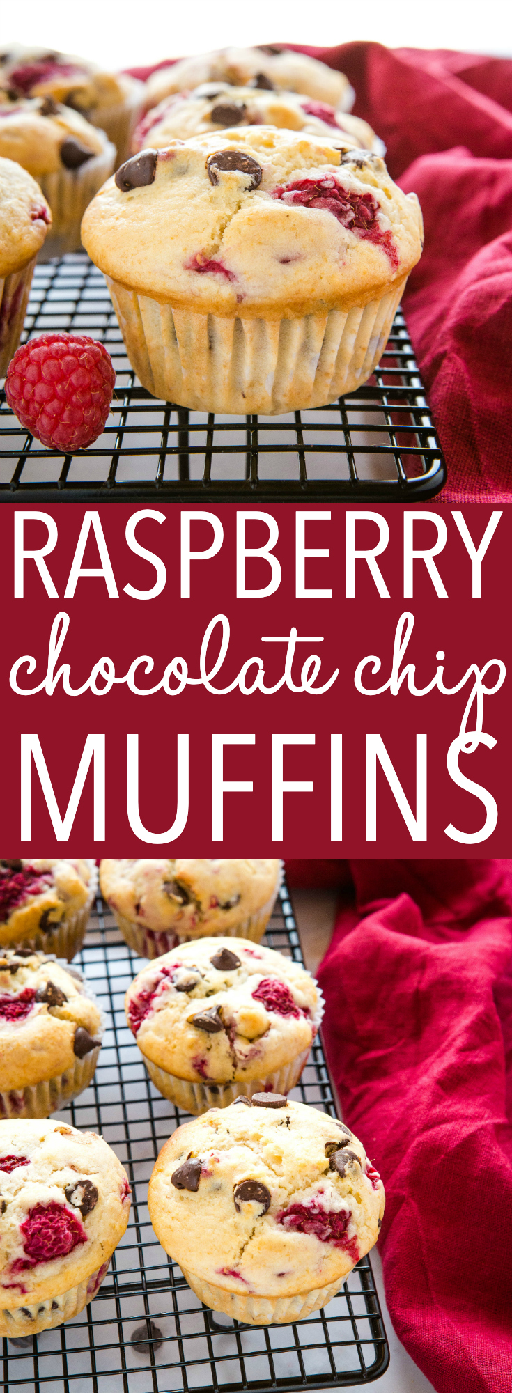 These Raspberry Muffins with Chocolate Chips are the perfect sweet treat for breakfast or brunch. Make this recipe for moist, tender muffins packed with sweet chocolate chips and juicy, fresh raspberries! Recipe from thebusybaker.ca! #raspberrymuffins #muffins #baking #chocolatechip #sweet #baker #muffinrecipe via @busybakerblog