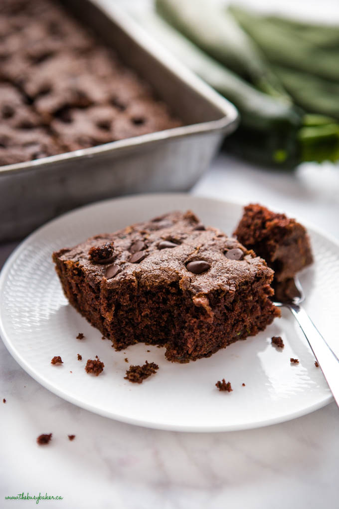 slice of chocolate cake with zucchini and chocolate chips
