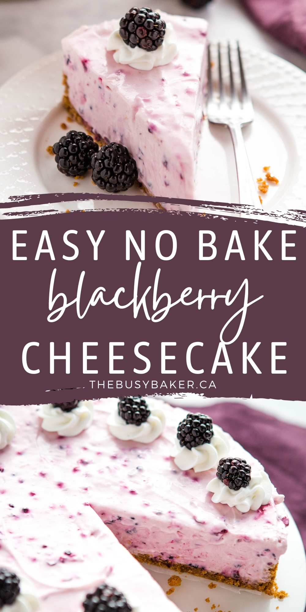 This No Bake Blackberry Cheesecake is the perfect easy-to-make cheesecake dessert that's ultra creamy, silky smooth & delicious and packed with fresh juicy blackberries!Recipe from thebusybaker.ca! #cheesecake #nobake #summer #summerdessert #blackberry #blackberries #berrydessert #freshberries #summerberry via @busybakerblog