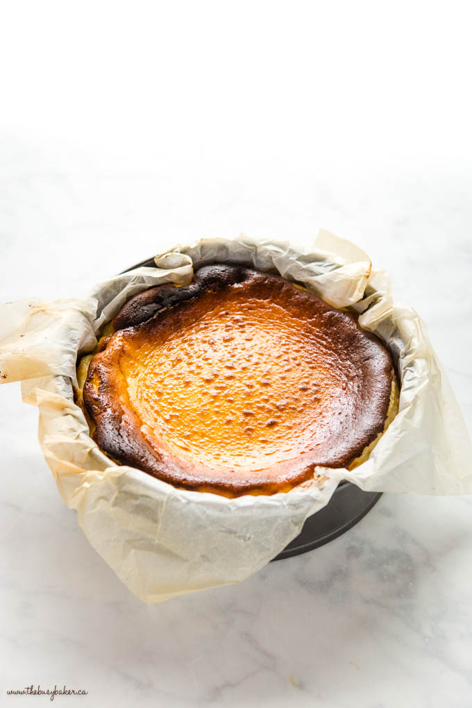 burnt basque cheesecake in parchment lined pan