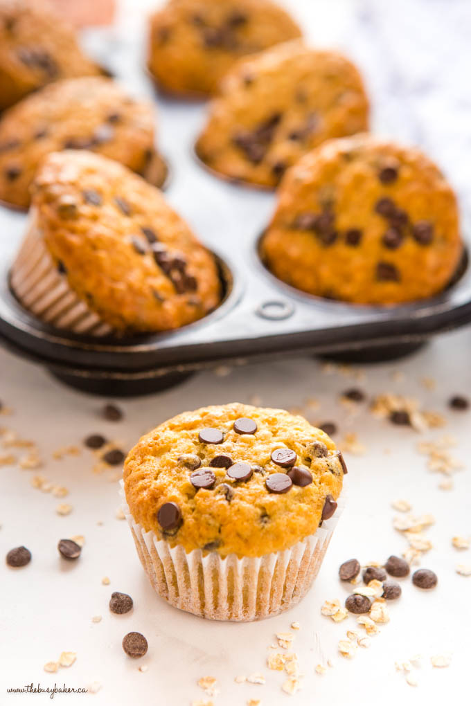 oatmeal chocolate chip muffin