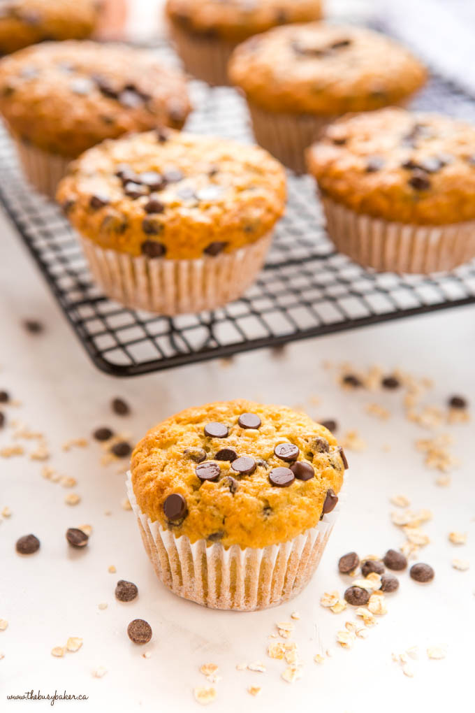 oatmeal muffin with chocolate chips and oats